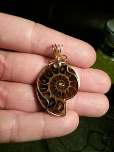 Ammonite pendant in gold wire wrap • This fossil is over 45 million years old • See more of his stunning jewelry collection on Facebook • Armando Jr Designs