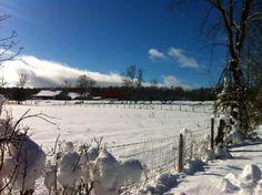 Snow covered farm (Credit: Kristin Kimball)