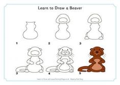 Learn to Draw a Beaver