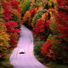 Listen to our Harvest chill playlist and take a drive through the heavenly foliage. - Why New England Is the Best Place to Experience Autumn  - CountryLiving.com