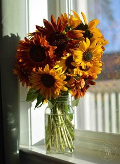 5 great tips on how to keep sunflowers alive and fresh in a vase! Home Flower Arrangements, Sunflower Arrangements, How To Make Sunflower, Sunflower House, Planting Sunflowers, Still Life Flowers, Wedding Car, White Vases, Glass Vase