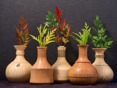 Ash and Maple Vases