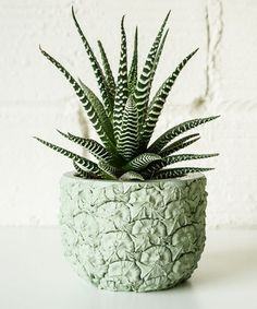 Shop Adult Apartment Decor - Stylish Home Buys | Update your apartment for the new year with these 30 very adult decor pieces. #refinery29 http://www.refinery29.com/adult-apartment-decorations