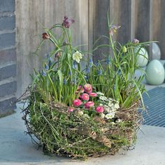 Floristik-Prüfungsvorbereitung: Pflanzschale mit Frühlingsblumen in der Werkstück-Analyse