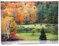 """Killington Vermont"" by George Zucconi Painting Print on Canvas"