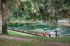 Salt Springs, Fl. Used to spend every day, all summer in those springs.