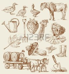 Find hand drawn stock images in HD and millions of other royalty-free stock photos, illustrations and vectors in the Shutterstock collection. Thousands of new, high-quality pictures added every day. Stock Foto, Clipart, Garden Tools, Illustration, Vintage World Maps, How To Draw Hands, Royalty Free Stock Photos, Hanger, Photos