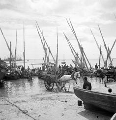 Artur Pastor was a Portuguese photographer whose work focused on everyday life of common people. Algarve, Old Pictures, Old Photos, Vintage Photos, Places In Portugal, Portugal Travel, Fishing Boats, Sailboat, Lisbon