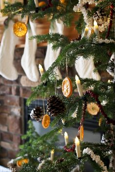 Be inspired to use Natural Christmas Decorations - dried oranges, apples, cranberry strings, popcorn strings, pinecones and fresh greenery. #camitidbits #naturalchristmas #nature #christmasdecoration #popcornstrings