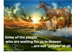 Some of the people we will see in Heaven are not people at all
