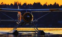 Float Plane lessons! Yes Please ;)