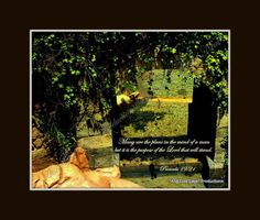Proverbs 19:21 Inspirational Scripture Pictures at And God Says Productions  Come like us on facebook and become a fan of Inspirational Scripture Photos by Jeanne Geidel-Neal!  Thanks!    https://www.facebook.com/pages/And-GOD-SAYS-Inspirational-Scripture-Pictures/186112668071418?ref=hl