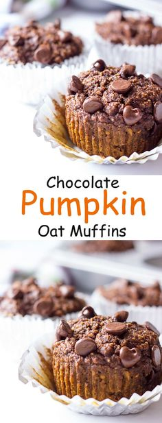 Chocolate Pumpkin Oat Muffins recipe - great for breakfast or a snack. Only 125 calories!