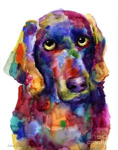 Colorful Weimaraner Dog Art Painted Portrait Painting Painting by Svetlana Novikova - Colorful Weimaraner Dog Art Painted Portrait Painting . Dog Pop Art, Dog Art, Weimaraner, Zentangle, Baby Painting, Dog Paintings, Watercolor Animals, Pet Portraits, Pet Birds