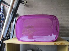 A mesh laundry hamper makes a great butterfly rearing cage!