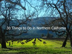 30 things to do in Northern California -- 31 if you count learning to say hella :)
