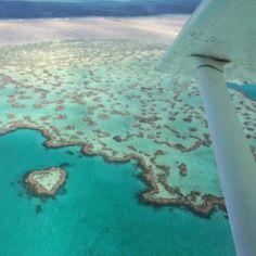 Speechless #heartreef #greatbarrierreef #wonderfulnature #coral #love by xaroot14 http://ift.tt/1UokkV2