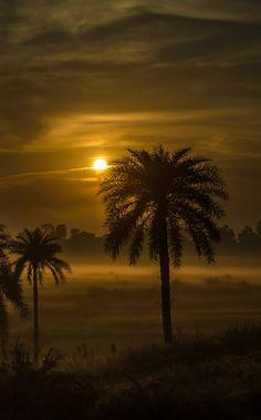 AMAZING SUNSET .....  West   Bengal