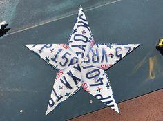 "21"" License Plate Star"