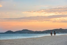 Ride off into the sunset with the one you love. Experience an all inclusive trip to Hyatt Ziva Los Cabos.
