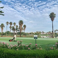 Well done to Nikki and their Silver Lakes teams for keep our club and golf course in perfect condition Golf Estate, Silver Lake, Summer Vibes, Lakes, Golf Clubs, Golf Courses, Dolores Park, Travel, Photos