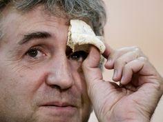 (72) - A partir de los datos genéticos, los investigadores calcularon una edad aproximada para el fósil de la Sima de los Huesos de unos 400.000 años, muy parecida a la estimada por el mismo procedimiento para el oso, que se estimó que vivió en la sierra de Atapuerca hace 430.000 años.
