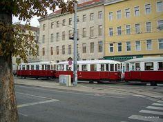 Three trams in a tram-train in Vienna
