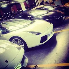 Lamborghini loving