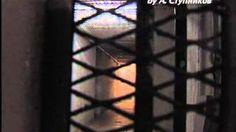 Смотреть онлайн видео Израильская тюрьма