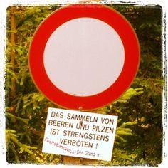 Fuchsbandwurm !!! Tours, Mushrooms