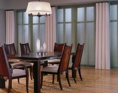 Check out these room darkening pleated window shades from Blinds Chalet! These pleated shades block more light and provide more privacy than standard shades. Skylight Shade, Door Shades, Cellular Shades, Patio Shade, Cost Saving, Room Darkening, Patio Doors, Windows, Trendy Tree