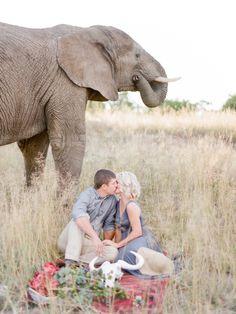 Amazing South African e-sesh: http://www.stylemepretty.com/destination-weddings/2015/09/02/romantic-south-african-safari-engagement-session/ | Photography: Rensche Mari - http://www.renschemari.com/
