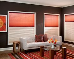 Graber - Blinds & Shades | Pleated Shades