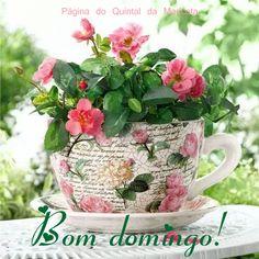 """""""Mas rezo sobretudo / porque é gostoso / agradecer por tudo / milagres da natureza / desastres do mundo / a dor irmã do gozo / a bênção da beleza / o tempo de menino / os golpes do destino / e o diário renascer / tudo num segundo / entre vermelho e verde / numa esquina qualquer de / Londres ou Londrina / rezo que me ilumina"""" [Trecho da poesia """"Orações e Saudades"""", de Domingos Pellegrini]"""
