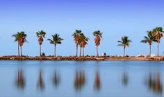 Matheson Hammock Beach Is Breathtakingly Beautiful Us Destinations South Miami C Gables