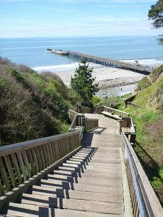 Santa Cruz, California. The motivation stairs. You look at them, from the bottom, and decide you need motivation to get up them.