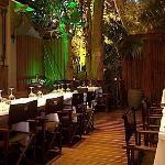 Port Douglas Restaurants from Tripadvisor.com