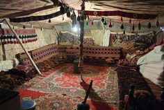Discover The Perfect Traditional Dining Rugs For Your Yurt