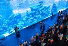 Shopping Malls in Dubai to Visit by Metro/Train - Free Things to Do in Dubai