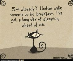 "Who Needs an Alarm Clock?  Or a Good Night's Sleep? Mine ""go off"" at midnight and 2:30am..."