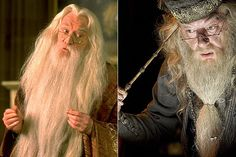 Professor Albus Dumbledore (Richard Harris and Michael Gambon) - Headmaster. Known as the greatest wizard of his time, he spent many decades overseeing Hogwarts School of Witchcraft and Wizardy ( where he previously taught transfigurations).   Hero Complex Pop Culture Unmasked - 1