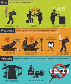 Global Health Security: Stopping the Ebola Outbreak Infographic. Virus Symptoms, Health Communication, Science Room, Infection Control, How To Create Infographics, Medical Humor, Important Facts, Blood Test