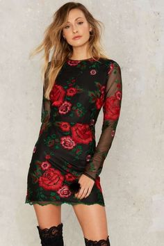 Nasty Gal Get Sprung Embroidered Mini Dress