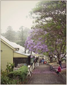 Postcards and Morsels - Kiama, NSW - Terrace Houses, the only wooden terraces in NSW! http://www.bizzylizzysgoodthings.com/2/post/2014/01/postcards-and-morsels-kiama-nsw.html