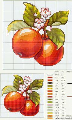 El azahar y sus frutos