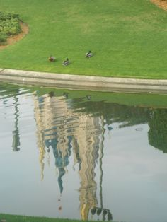 Reflection from the pond of Cinderella's Castle