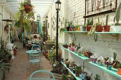 Una vez adentro, el jardín de invierno con mesas rodeadas de plantas, el deck al sol junto al limonero, y el sector interno con mesitas de cerámicas pintadas a mano, son algunos de los rincones que esperan ansiosos un cafecito y una charla.