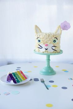 rainbow cat cake DIY by coco cake land