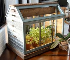 My goal for the year is to not kill plants.  Maybe this would help, it would look good either way.