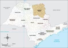 Mesorregião de Ribeirão Preto